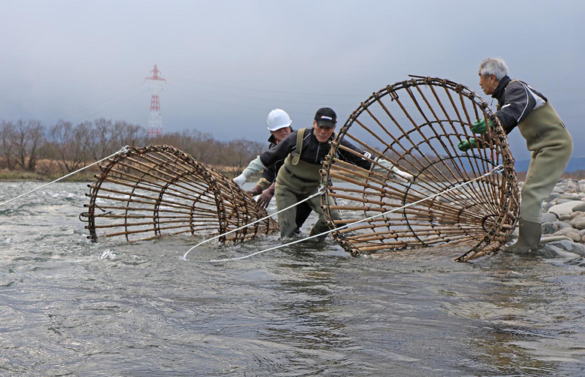 アラレガコ漁