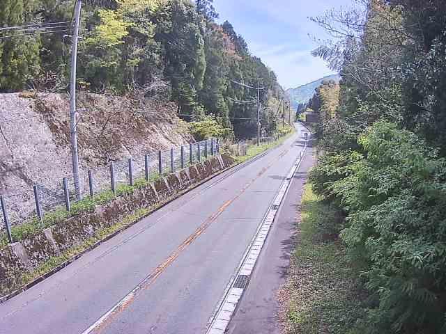 国道365号[南越前町 孫谷]ライブカメラ